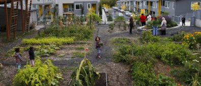Growing Gardens-supported urban garden